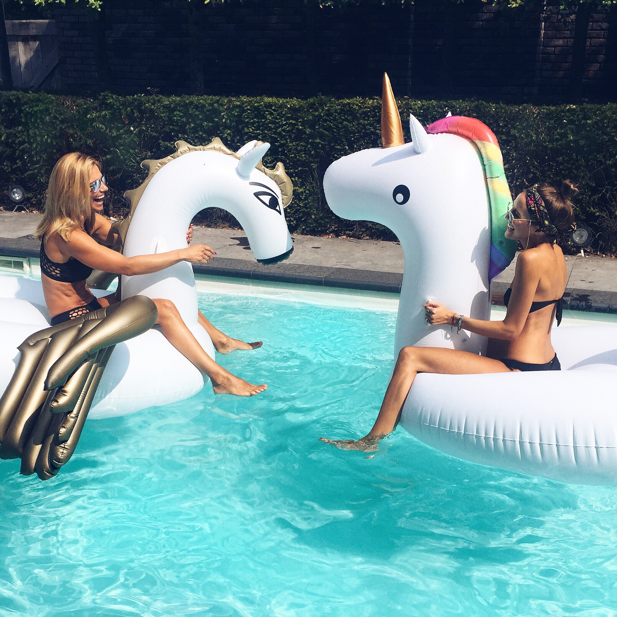linda_tsetis_worlds_affair_unicorn_pangasus_swimmingpool