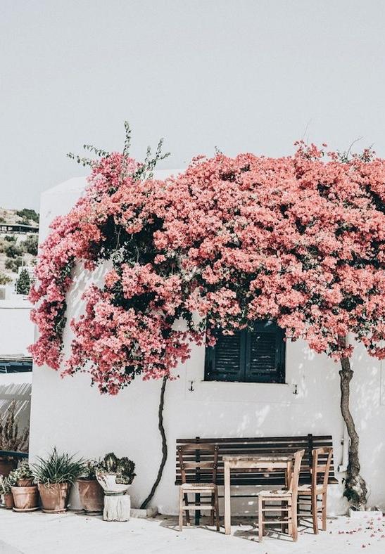 linda_tsetis_travel_greece_mykonos_santorini
